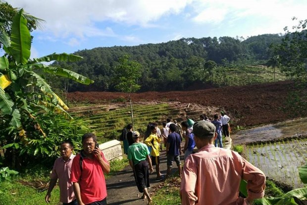 Indonesia: 11 missing in Central Java landslide hinh anh 1