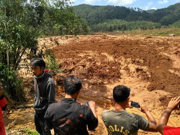 Indonesia landslide leaves at least 5 dead, 15 missing hinh anh 1