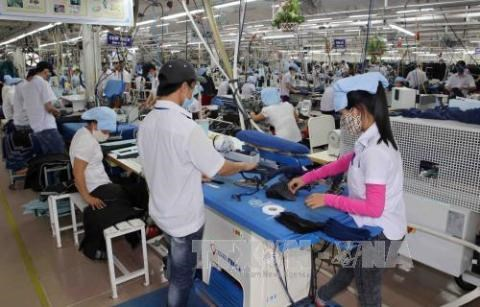 Over 96 percent of workers in Da Nang return to work after Tet hinh anh 1