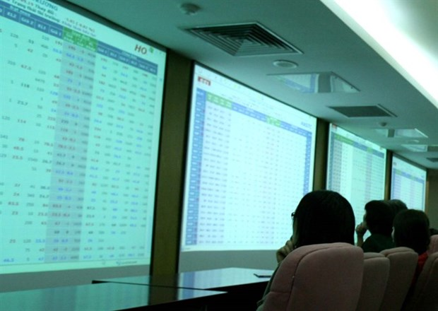 Shares rally on investor optimism hinh anh 1