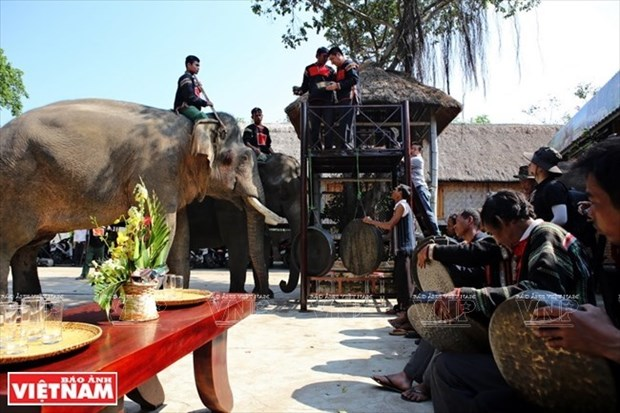 Flow of tourists to Dak Lak surges 20 percent during Tet hinh anh 1