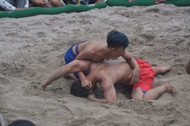 Thua Thien-Hue holds wrestling bout to warm up new year hinh anh 1