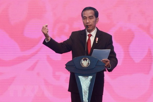 Ruling Indonesia party endorses Widodo as presidential candidate hinh anh 1