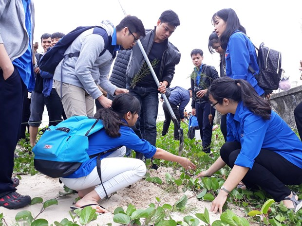 Localities nationwide launch New Year tree planting festival hinh anh 1