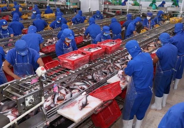 Aquatic export enjoys 29.5-percent growth in Jan-Feb hinh anh 1