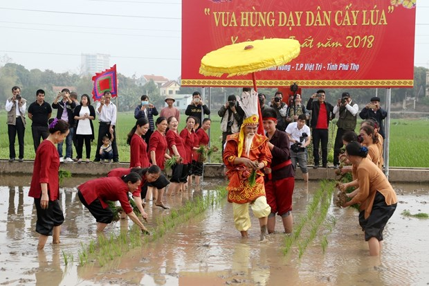 Festival commemorates Hung Kings' teaching of rice cultivation hinh anh 1