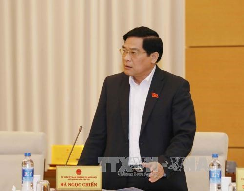 Vietnam, Laos NA ethnic councils seek stronger cooperation hinh anh 1
