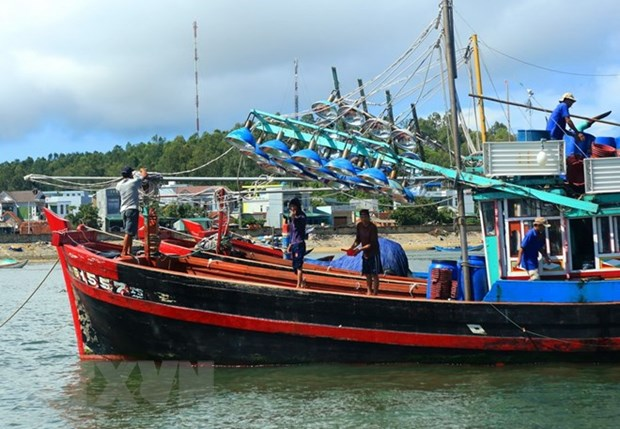 Phu Yen takes urgent measures against illegal fishing hinh anh 1