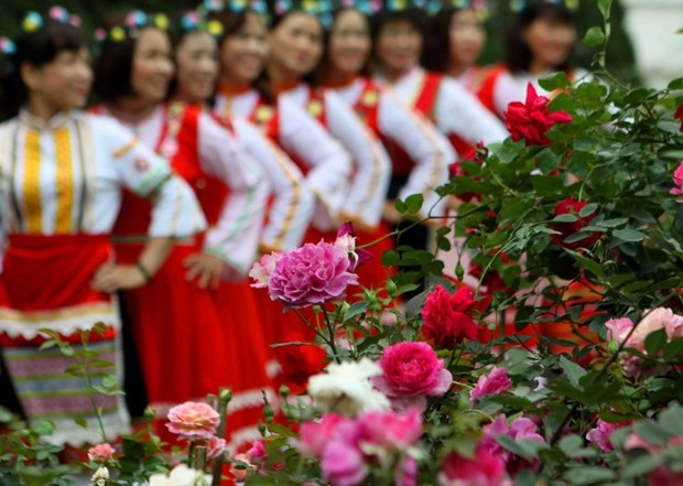 Thousands of people join Bulgarian rose festival in Hanoi hinh anh 1