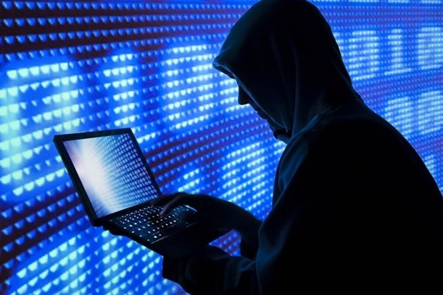 Some 1,500 cyber-attacks reported in first two months hinh anh 1