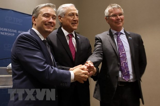 Canada, Chile, New Zealand boost cooperation within CPTPP framework hinh anh 1