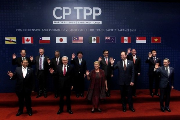 CPTPP trade deal officially inked in Chile hinh anh 1