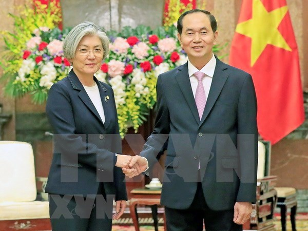 President hosts RoK Foreign Minister hinh anh 1