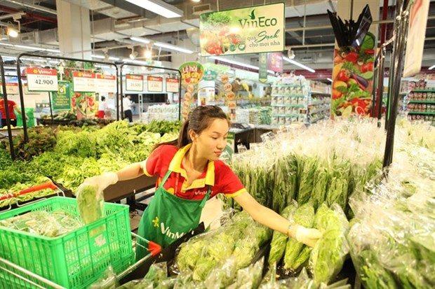 Vietnamese billionaires vow to boost agricultural development hinh anh 1