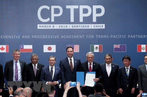 CP TPP – a progressive trade direction in 21st century hinh anh 1