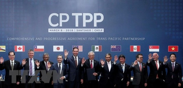 Domestic businesses expect positive impacts by CPTPP hinh anh 1