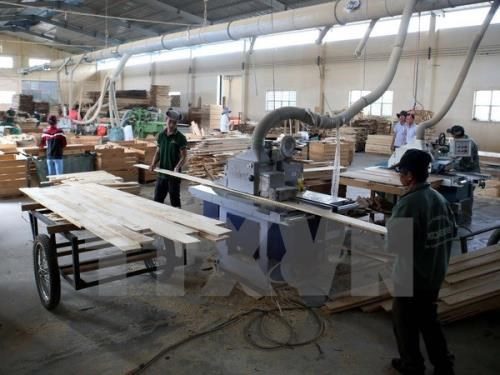 More opportunities await Vietnam's wood industry than challenges: official hinh anh 1
