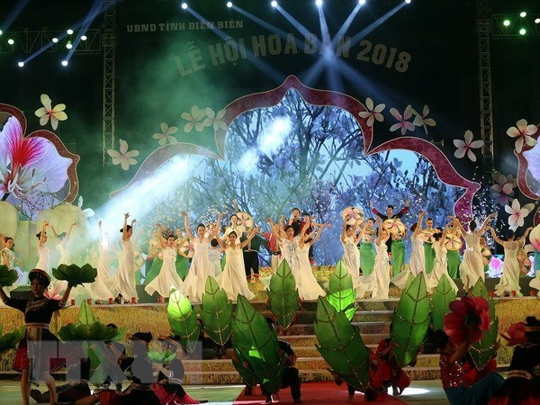 Ban Flower Festival 2018 honours traditional cultural values hinh anh 1