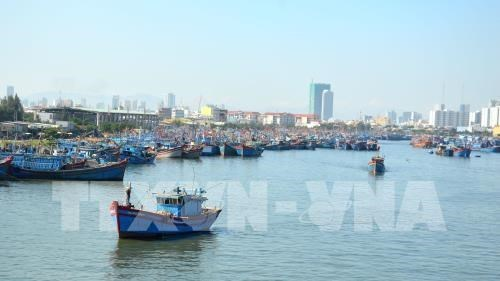 Kien Giang moves to support local fishermen hinh anh 1