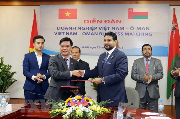 Vietnam, Oman look to fostering investment cooperation hinh anh 1