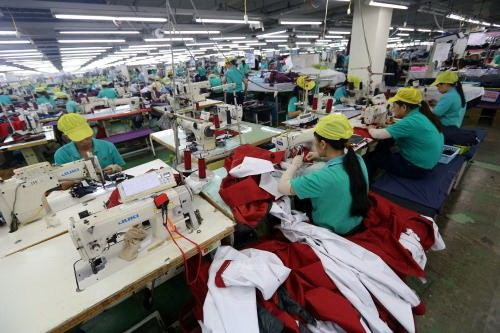 Mekong Delta province to have 14 industrial hubs hinh anh 1