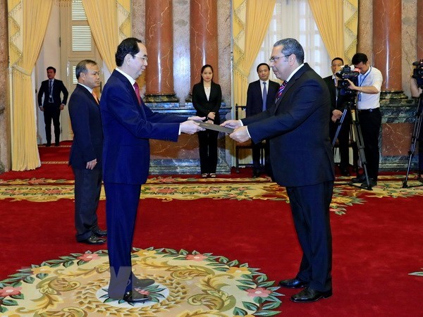 President meets new South African, Egyptian ambassadors hinh anh 2