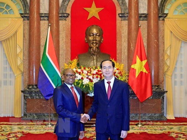 President meets new South African, Egyptian ambassadors hinh anh 1