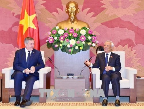 Parliamentary groups asked to foster Vietnam-Romania ties hinh anh 1