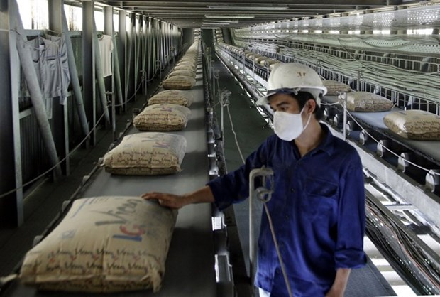 Domestic cement consumption down, export market bright hinh anh 1