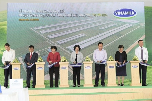 Vinamilk opens high-tech dairy farm in Thanh Hoa hinh anh 1