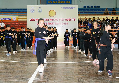First festival of Vietnam's martial arts wraps up hinh anh 1
