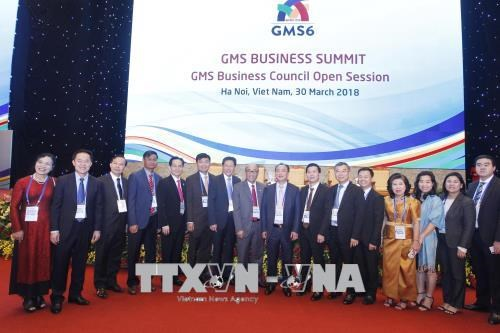 Private sector development a focus of GMS hinh anh 1