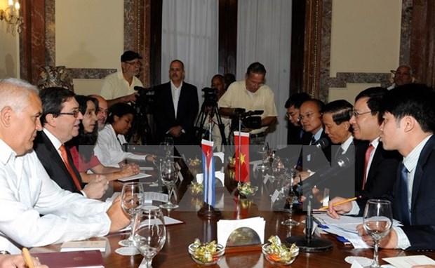 Vietnam, Cuba look towards more practical, effective relations hinh anh 1
