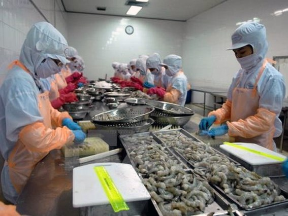 Kien Giang sees export surge in Q1 hinh anh 1