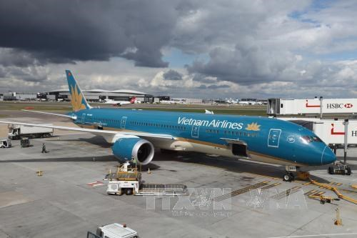 Vietnam Airlines, VietJet adjust fees up hinh anh 1