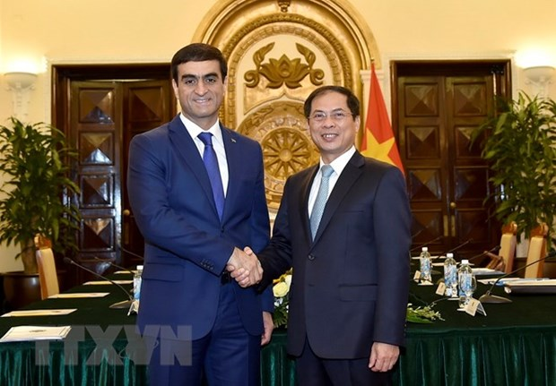 Vietnamese, Turkmen foreign ministries hold political consultation hinh anh 1