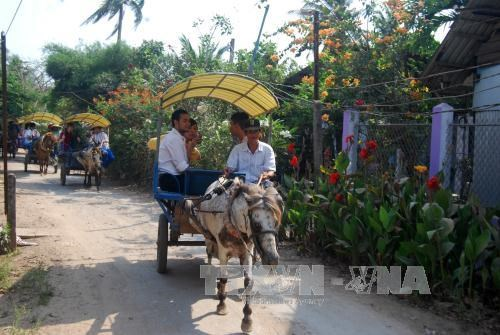 Ben Tre diversifies tourism products hinh anh 1