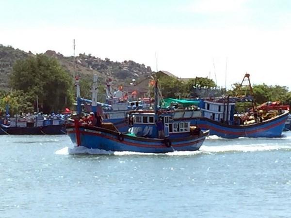Tien Giang develops offshore fishing fleet hinh anh 1