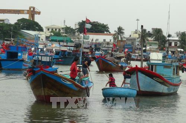 Vietnam to impose harsh punishments on illegal fishing hinh anh 1