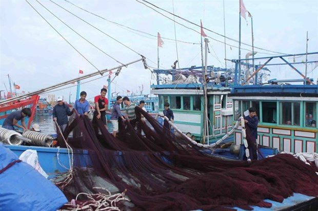 Quang Ngai tightens control of fishing activities to fight IUU hinh anh 1