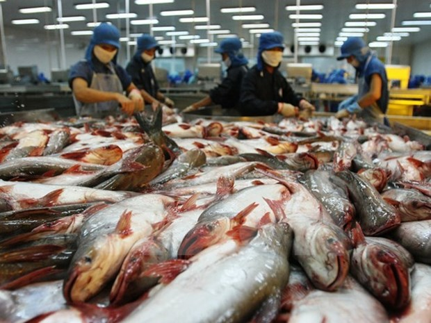 Measures sought for fisheries sector's sustainable development hinh anh 1
