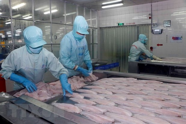 Ministry urges US to study Vietnamese tra fish market hinh anh 1