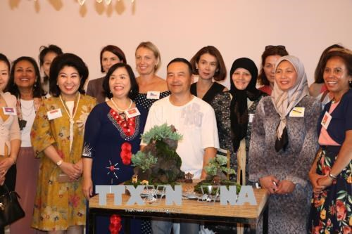 Get-together promotes Vietnamese culture in Australia hinh anh 1