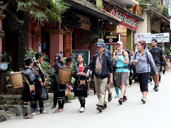 Late visa policy announcement challenges tourism hinh anh 1