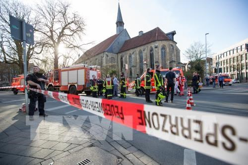 No Vietnamese harmed in car crash in Germany hinh anh 1