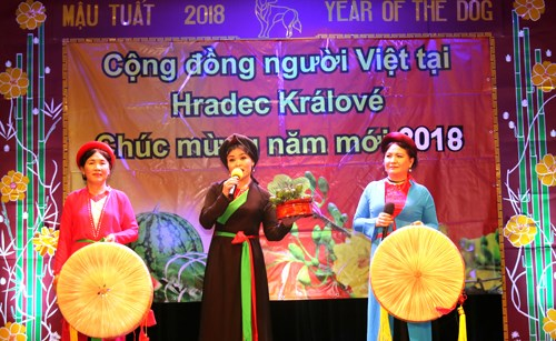 Poll: More Czechs fond of Vietnamese community hinh anh 1