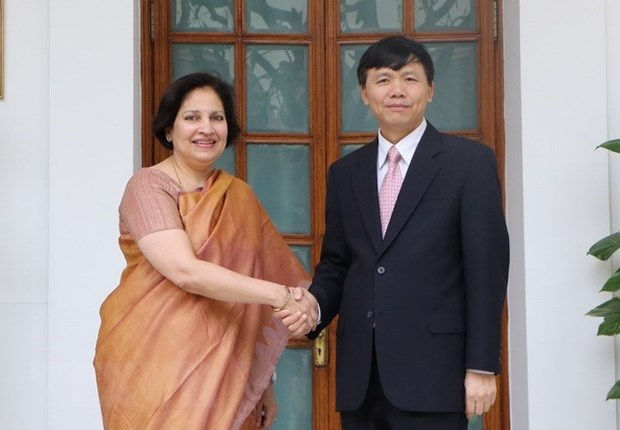 Vietnam, India hold 10th political consultation, 7th strategic dialogue hinh anh 1