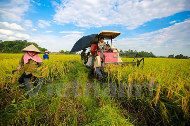 Vietnam commits to realising GMS high-tech agriculture priority hinh anh 2