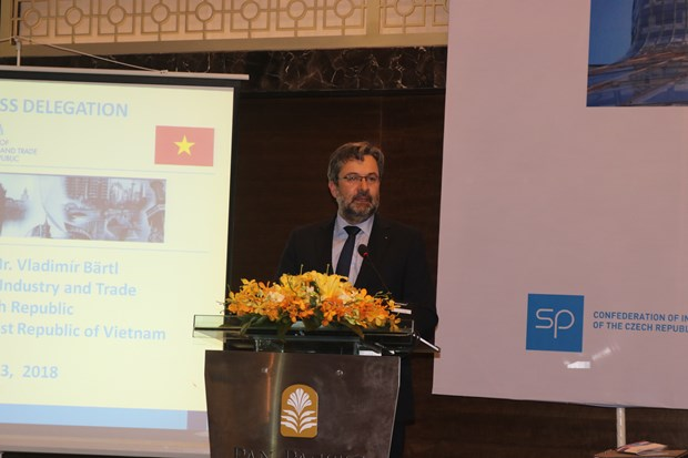 Vietnam, Czech share huge potential for trade cooperation hinh anh 1