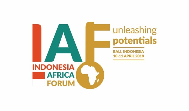 Indonesia-Africa forum opens in Bali hinh anh 1